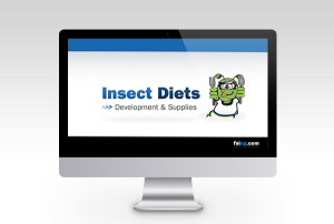 Insect-Diets-blog